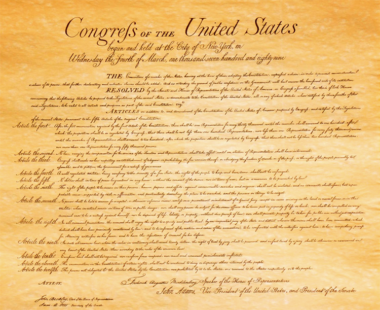 Constitution, Bill of Rights