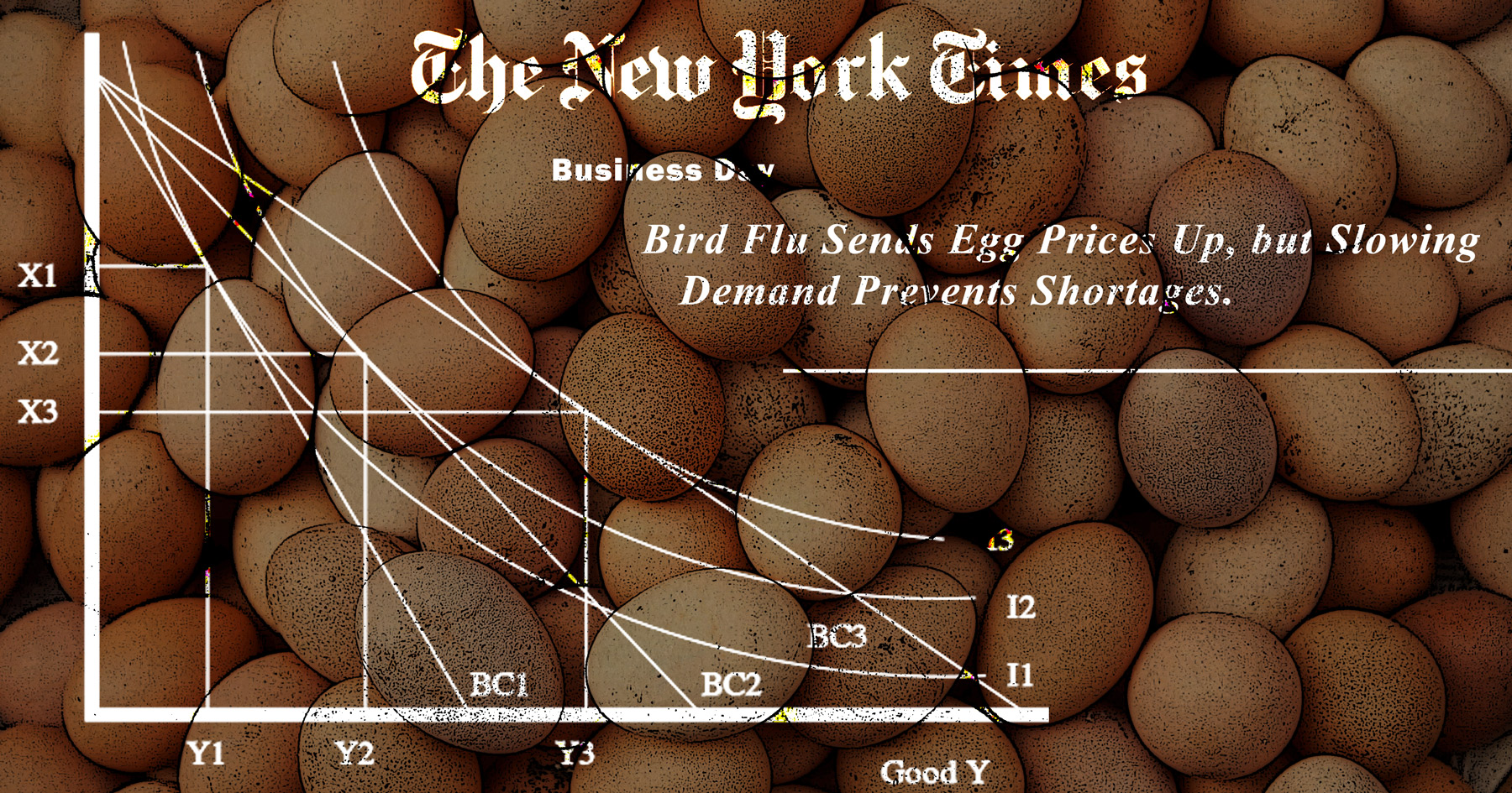 Eggs, New York Times, Economics, collage, photomontage, http://cognitivebiasparade.prosite.com/