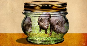 Politicians in a jar
