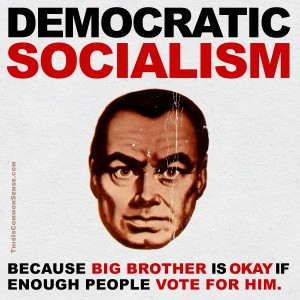 Democratic Socialism, Big Brother, socialism, vote, voting, egalitarian, meme, Jim Gill, Paul Jacob, Common Sense