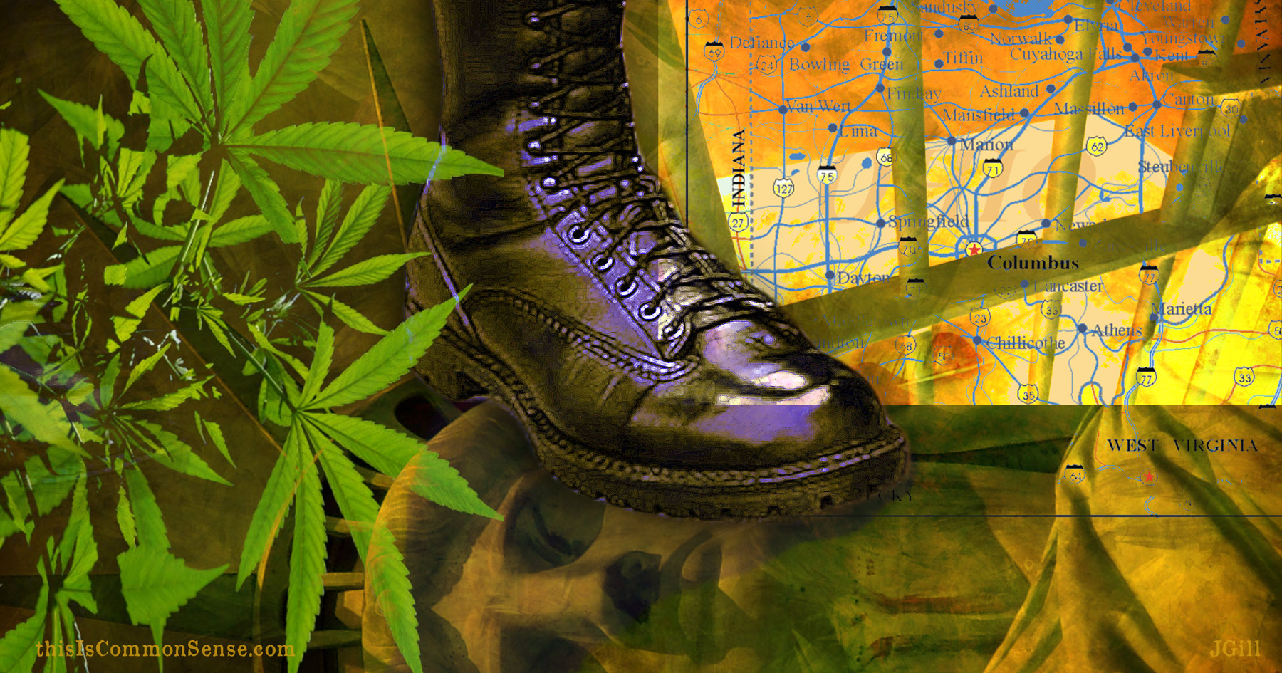 marijuana, legalization, Ohio, law, crime, illustration, Common Sense