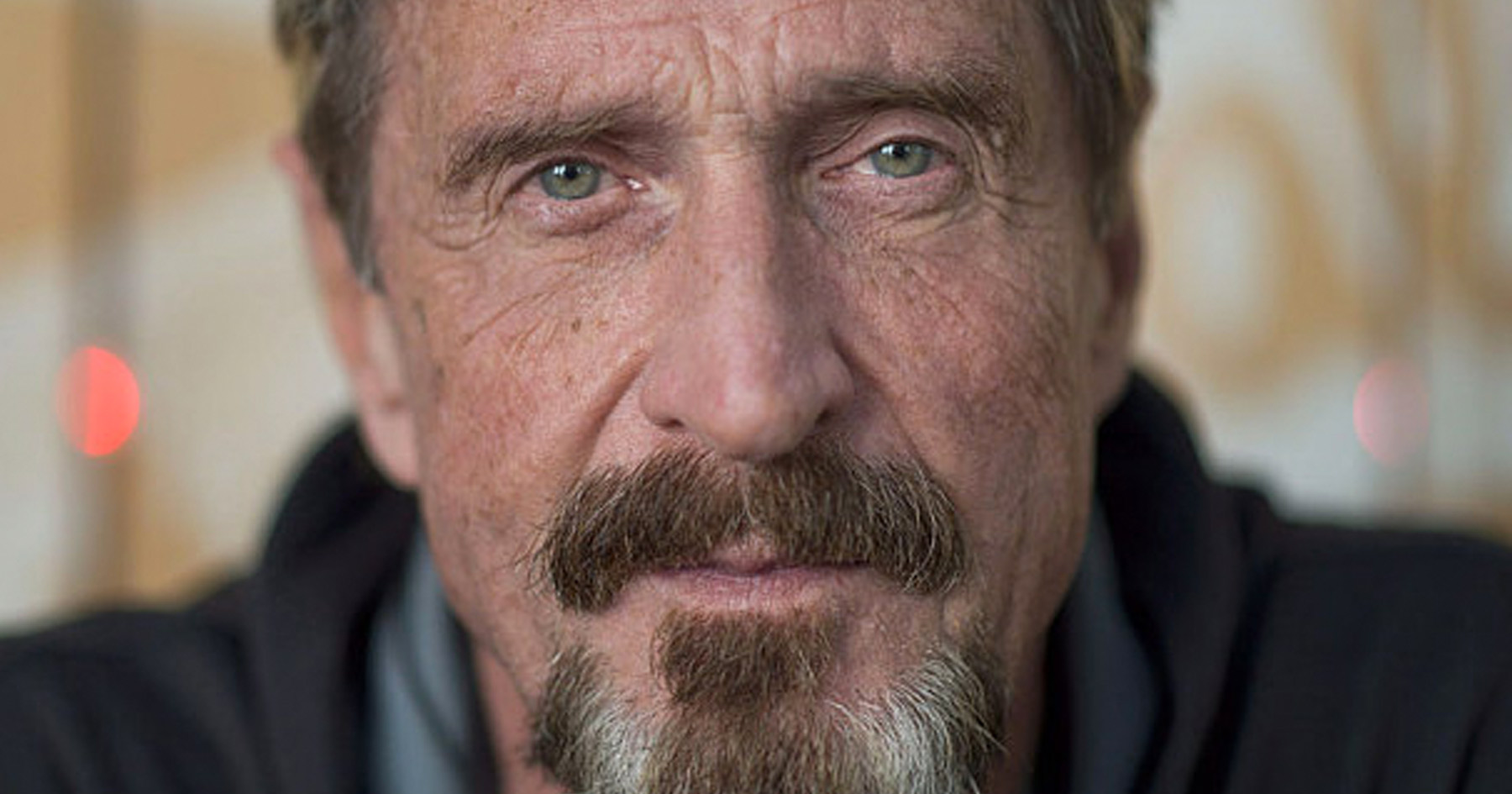 John McAfee, libertarian, presidential race, president, candidate