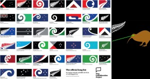 New Zealand, flags, flag, democracy, voting, Common Sense
