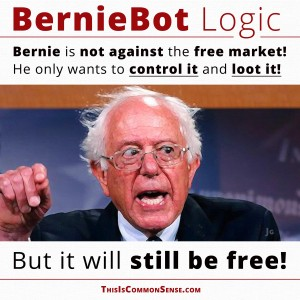 Bernie Sanders, Berniebot logic, Bernie is not against free markets, meme, Common Sense, mixed economy, democratic socialism
