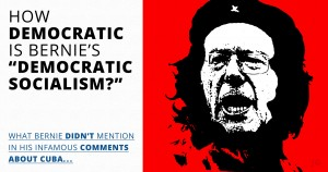 Bernie Sanders, Democratic Socialism, Che, democracy, meme, illustration, Common Sense
