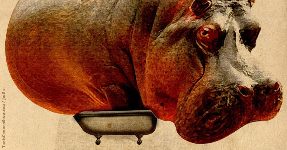 government, bathtub, Venezuela, illustration