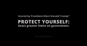 Protect Yourself, limited government, meme