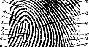terrorism, surveillance, privacy, fingerprint, targeted, illustration