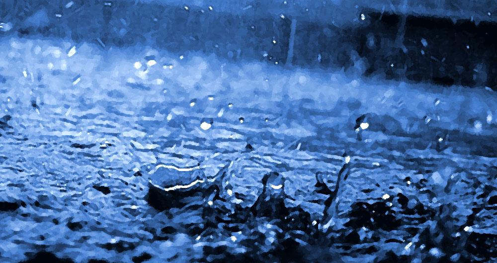 Hurricane Harvey, Cajun Navy, government relief, aid, Texas, Houston