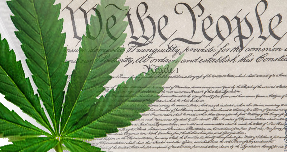 marijuana, constitution, intrastate, rights, legalization, decriminalization