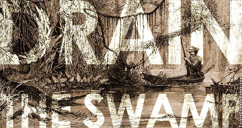 IRS, drain the swamp, Trump, Lois Lerner, tax, tax man