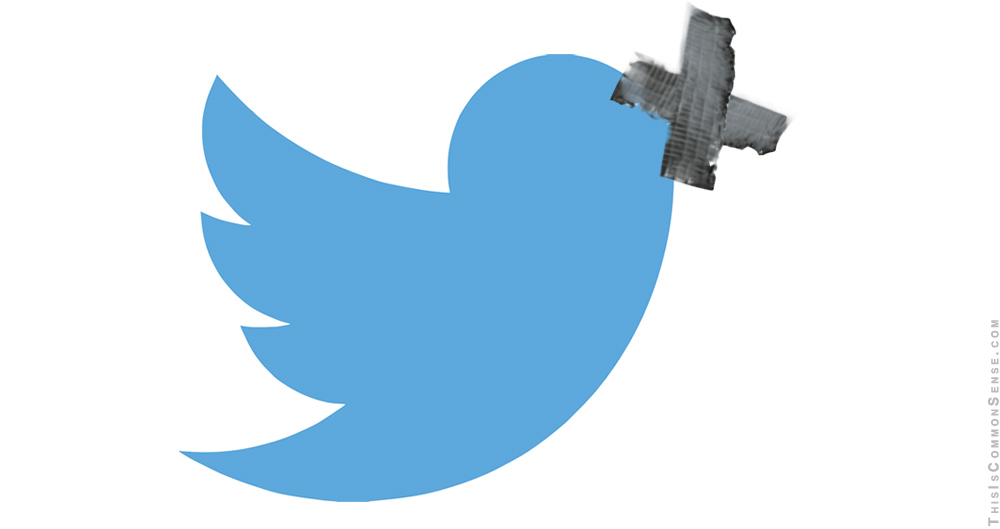 Twitter, censorship, Germany, Merkel, speech, double standard