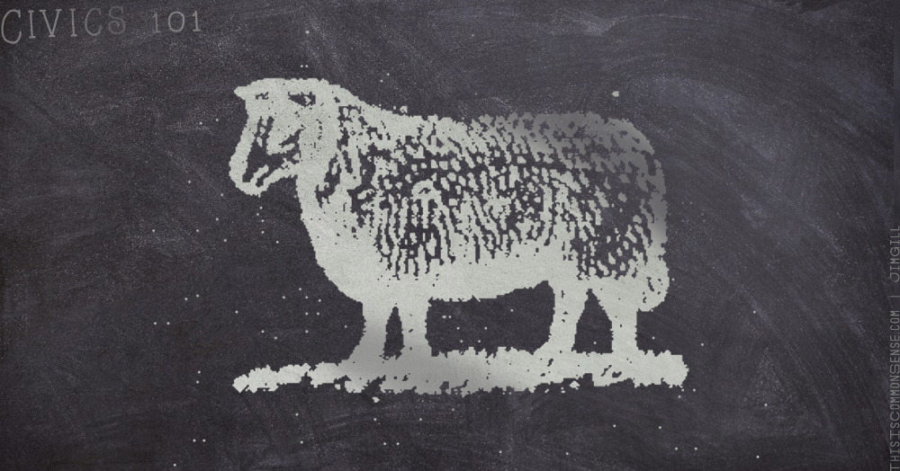 blackboard, sheep, public schools, indoctrination, protest, guns