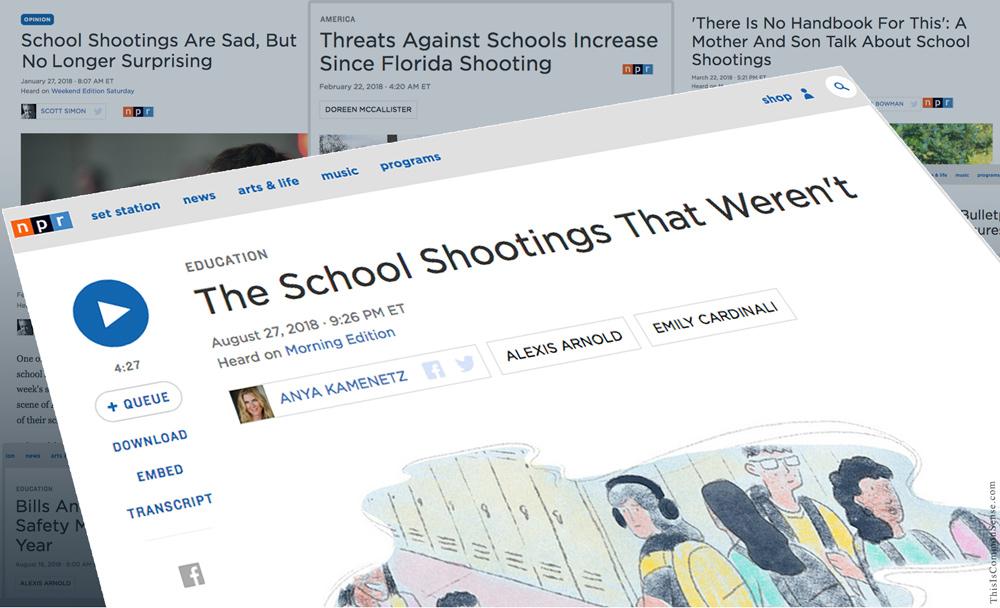 A Faulty Gun Report