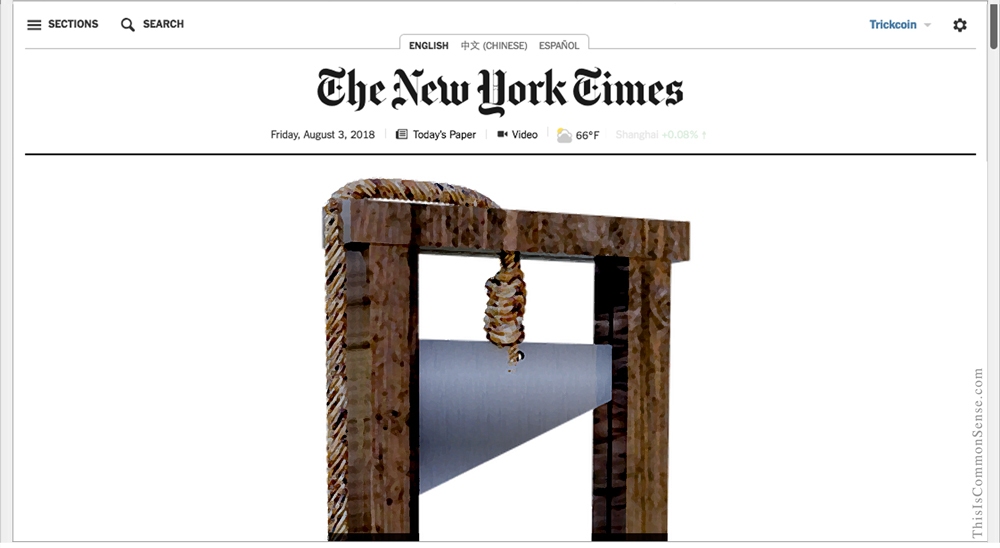 New York Times, The Terror, doxing, firing, racism, double standard