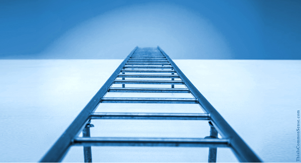 ladder, education, success, poverty, racism, schools, charter