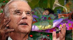 Biden Under the Bed