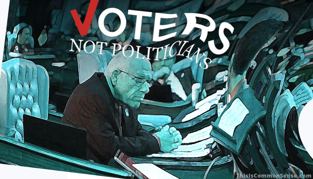 Politicians Not Voters