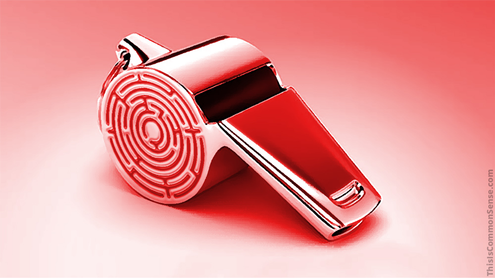 whistle, blower, Epstein, crime, informer,