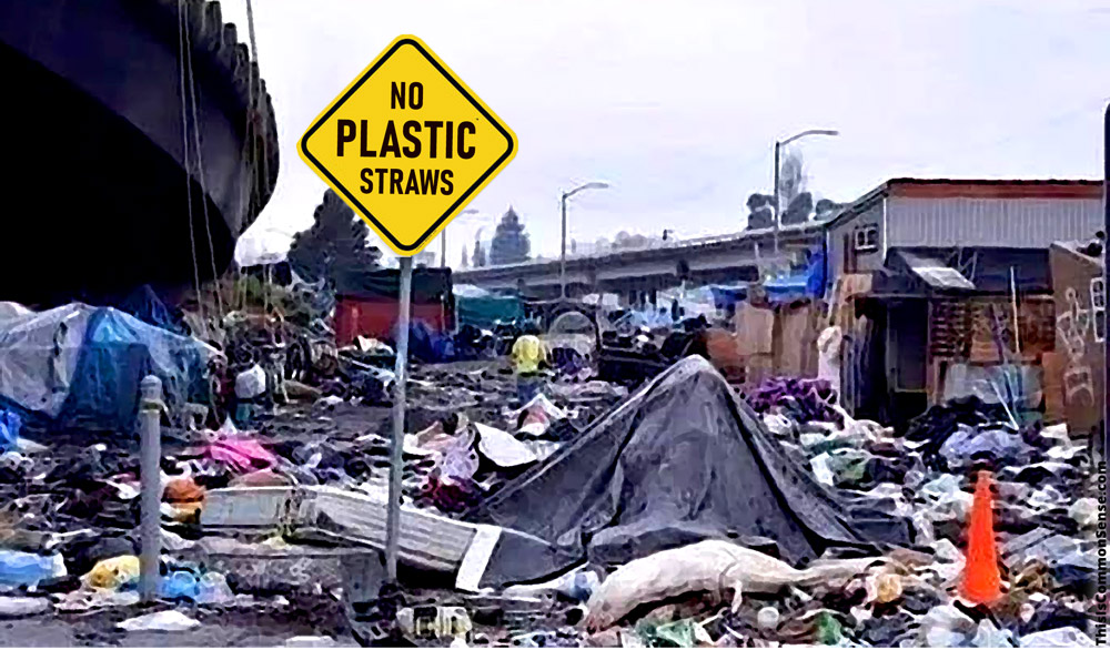 plastic, environmentalism, California, law, prohibitions, bans,