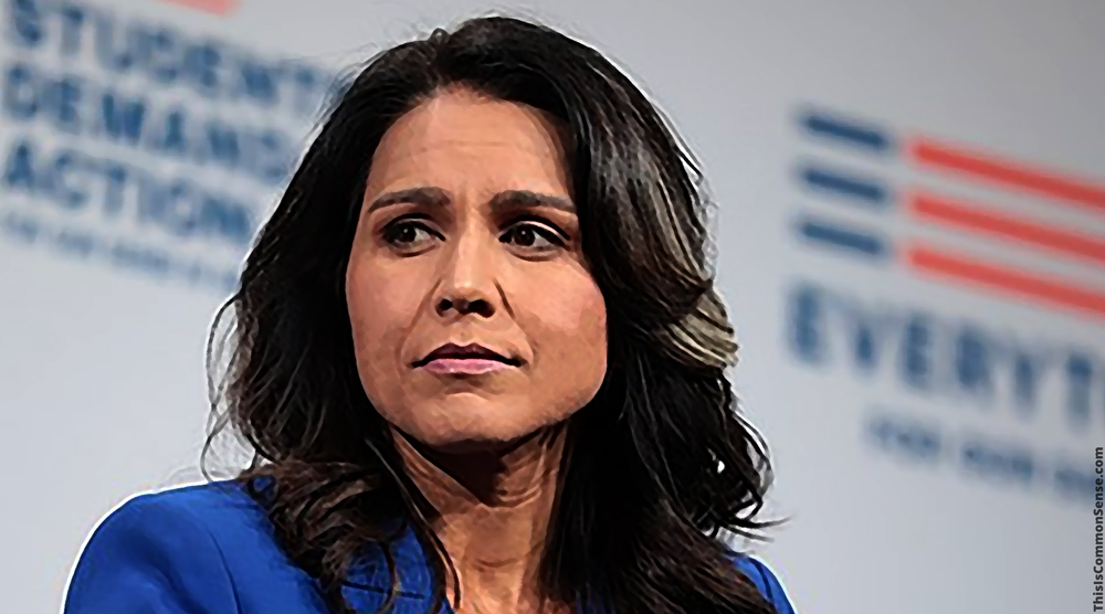 Tulsi Gabbard, Democrats, socialism, moderates,